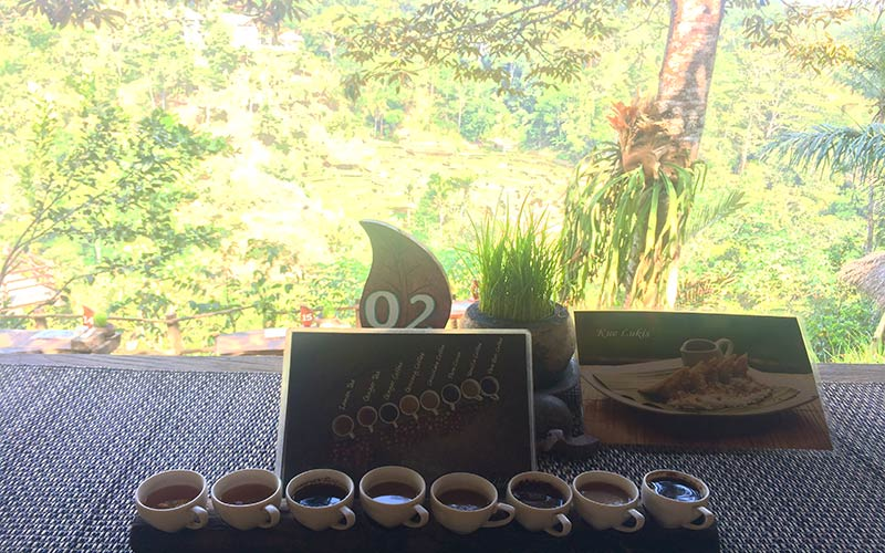 Granja café Luwak Bali