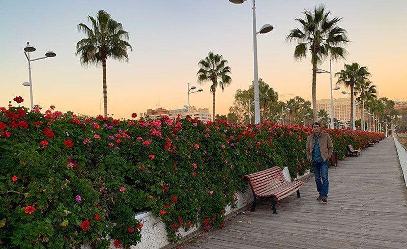 Puente de las flores valencia