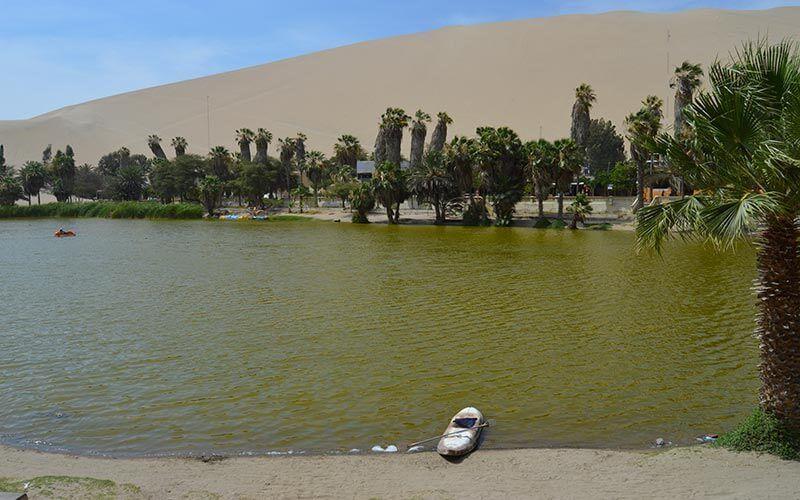 Oasis de Huacachina Ica Peru