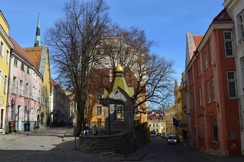 Calle Pikk Tallin