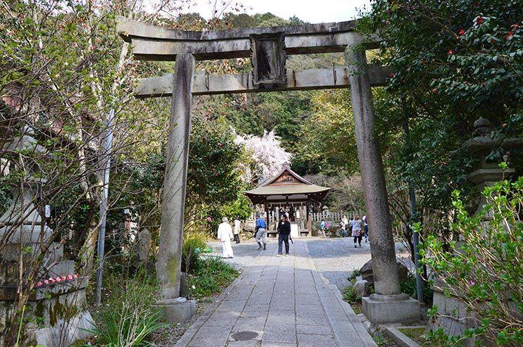 Camino de la filosofía Kioto