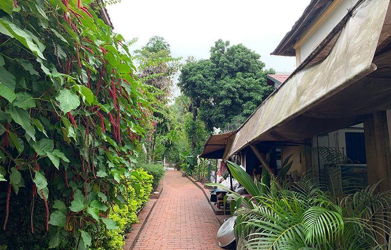Cómo moverse en Luang Prabang