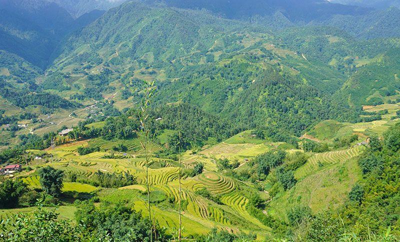 Trekking en Sapa: cómo hacer una ruta de senderismo de un día por los arrozales vietnamitas