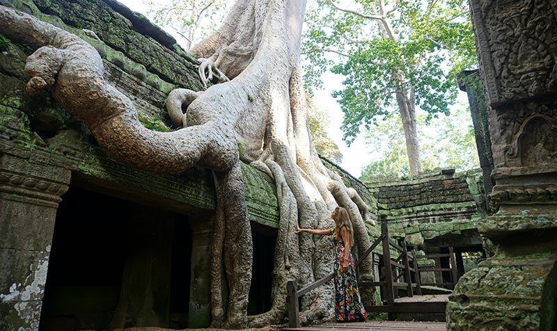 Templos de Angkor Ta Prohm Camboya