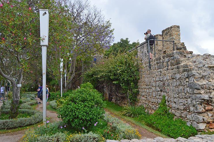 Castillo de Tavira