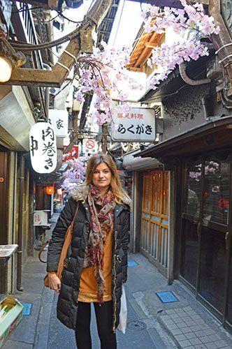 Omoide Yokocho Tokio que hacer en shinjuku