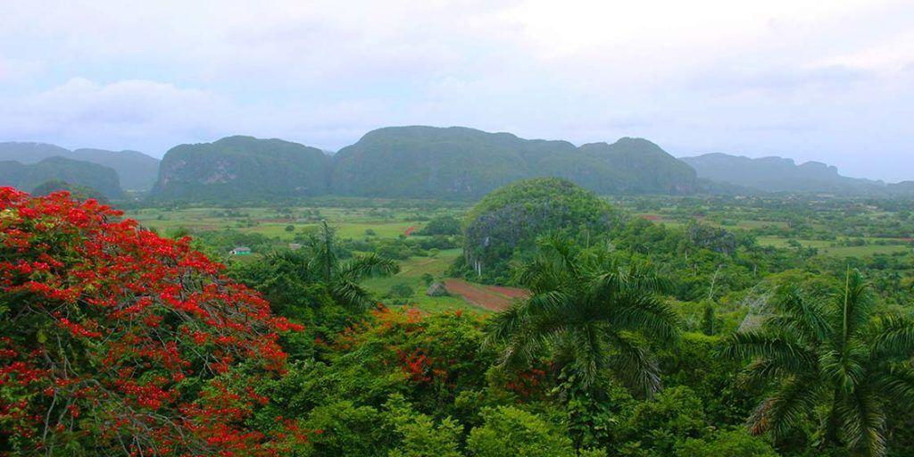 Qué ver y hacer en Viñales, la Cuba más rural
