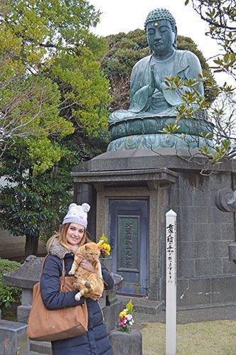 Tennoji Temple Tokio