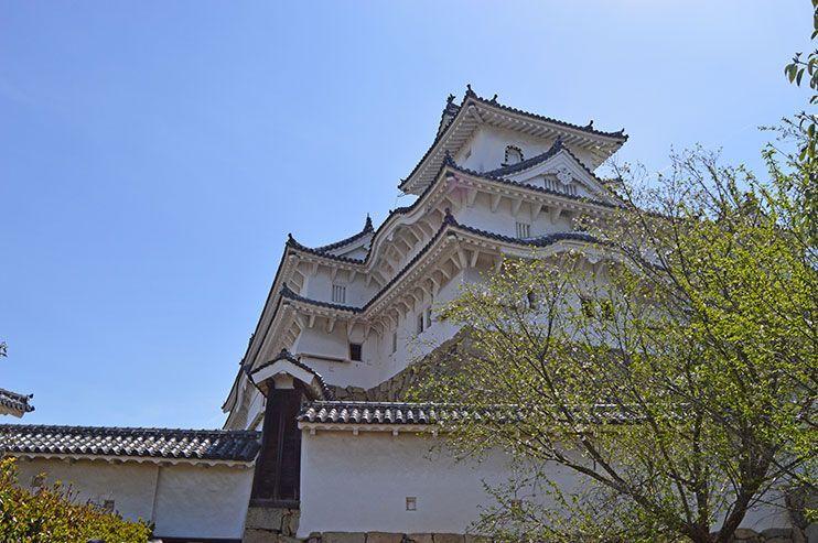 Castillo mas bonitos de japon
