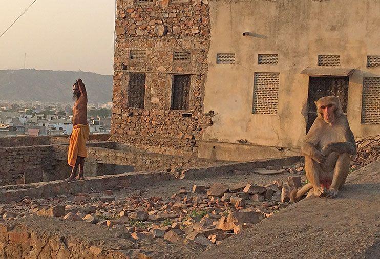 Galwar Bagh viajar a la India por libre