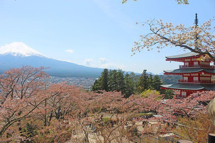 Desde donde ver el Monte Fuji