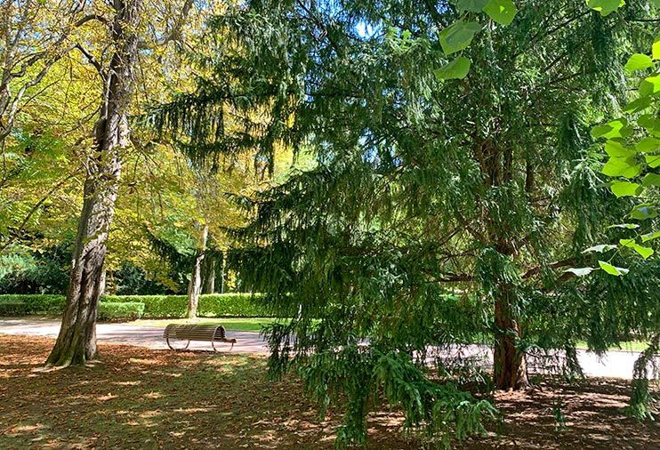 Parques de Vitoria