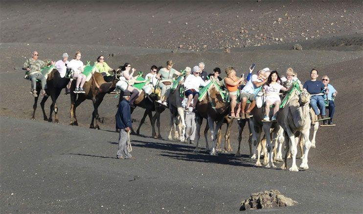 Echadero de los Camellos Timanyafa